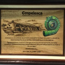 Coopelesca recognition